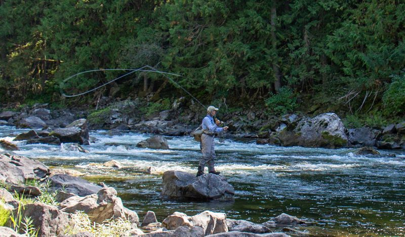 Orvis puts pro gear on everyday anglers