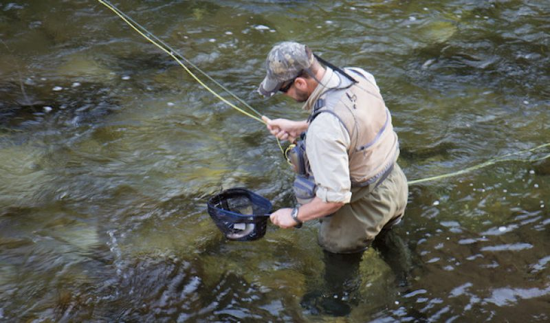 Net results: Finding the Perfect Fly Fishing Net