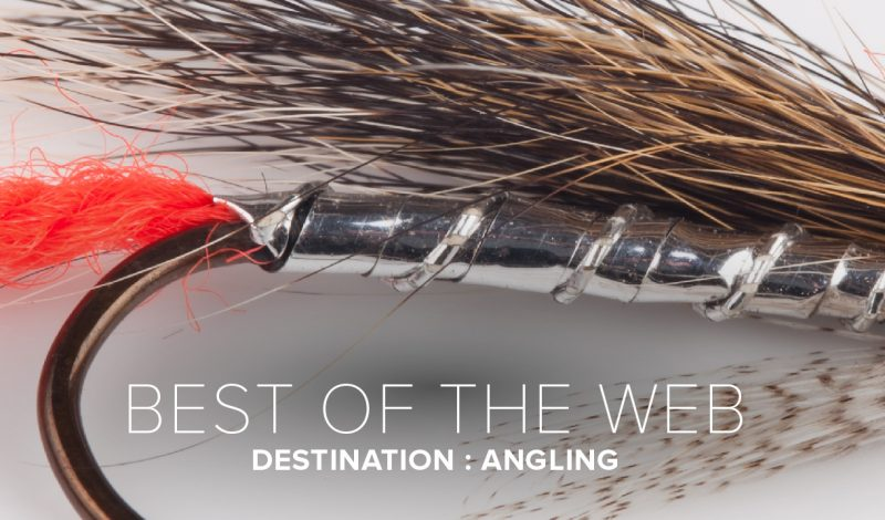 Angling Online: Top 5 Sites for Fly Fishers
